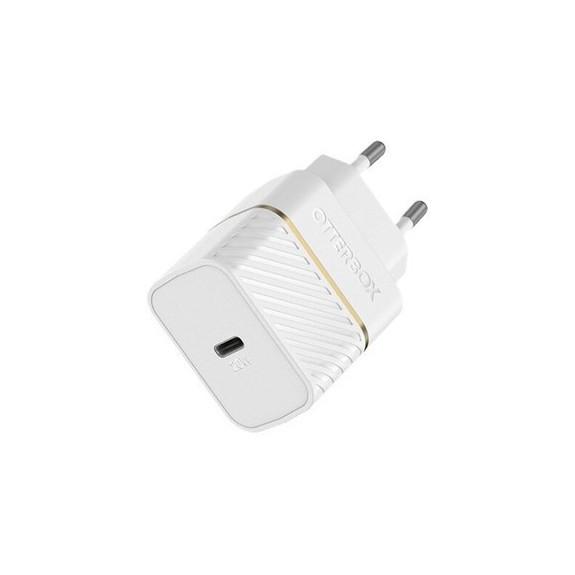 Chargeur + Câble Lightning